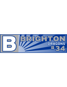 "Brighton Elementary School Dragons Bumper Sticker 11"" x 3"""