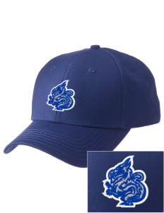 New Age Academy Learning Institute Dragons  Embroidered New Era Adjustable Structured Cap