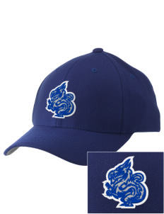 New Age Academy Learning Institute Dragons Embroidered Pro Model Fitted Cap