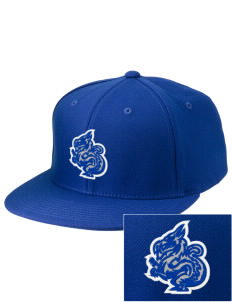 New Age Academy Learning Institute Dragons Embroidered Diamond Series Fitted Cap