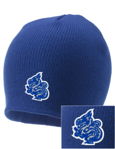 New Age Academy Learning Institute Dragons Embroidered Knit Cap
