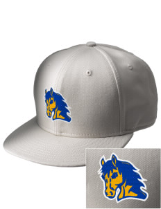 Flathead Valley Christian School Colts  Embroidered New Era Flat Bill Snapback Cap