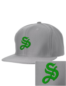 Shannon Elementary School Leprechauns Embroidered D-Series Cap