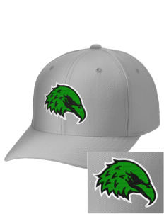 Indian Diggings Elementary School Eagles Embroidered Wool Adjustable Cap