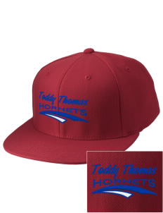 Toddy Thomas Elementary School Hornets Embroidered Diamond Series Fitted Cap