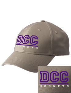 Deep Creek Central Elementary School Hornets  Embroidered New Era Adjustable Structured Cap