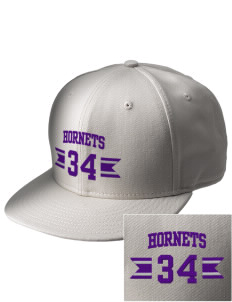 Deep Creek Central Elementary School Hornets  Embroidered New Era Flat Bill Snapback Cap