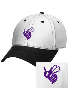 Deep Creek Central Elementary School Hornets Embroidered New Era Snapback Performance Mesh Contrast Bill Cap