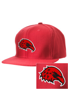 Pond Elementary School Eagles Embroidered D-Series Cap