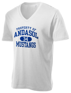 Andasol Elementary School Mustangs Alternative Men's 3.7 oz Basic V-Neck T-Shirt