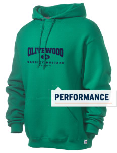 Olivewood Elementary School Mustang Russell Men's Dri-Power Hooded Sweatshirt