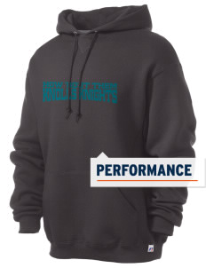 Knolls Elementary School Knolls Knights Russell Men's Dri-Power Hooded Sweatshirt