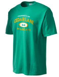 Cedar Lane Elementary School Wildcats Men's Essential T-Shirt