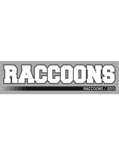 "South Egg Harbor Elementary School Raccoons Bumper Sticker 11"" x 3"""