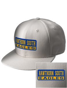 Hawthorn Elementary School South Eagles  Embroidered New Era Flat Bill Snapback Cap