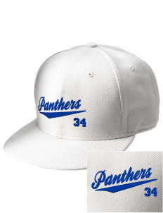 Rose Valley Elementary School Panthers  Embroidered New Era Flat Bill Snapback Cap