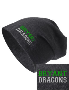 Bryant Elementary School Dragons Embroidered Slouch Beanie