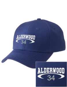 Alderwood Elementary School Dolphins  Embroidered New Era Adjustable Structured Cap