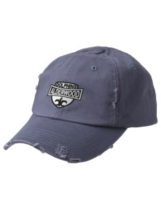 Alderwood Elementary School Dolphins Embroidered Distressed Cap