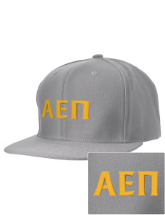 Alpha Epsilon Pi Embroidered D-Series Cap