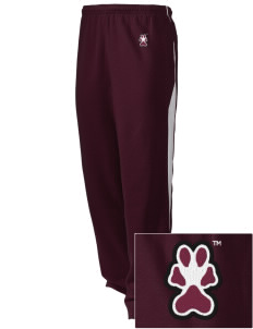 Southern Illinois University Salukis Embroidered Holloway Men's Pivot Warm Up Pants