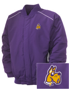 University at Albany State University of New York Great Danes Embroidered Russell Men's Baseball Jacket
