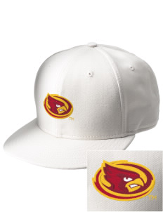 Iowa State University Cyclones  Embroidered New Era Flat Bill Snapback Cap