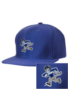 University of Wisconsin-Stout Blue Devils Embroidered D-Series Cap