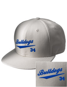 Colleton Middle School Annex Bulldogs  Embroidered New Era Flat Bill Snapback Cap