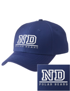 North Dover Elementary School Polar Bears  Embroidered New Era Adjustable Structured Cap