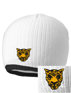Farmville Central High School Jaguars Embroidered Champion Striped Knit Beanie