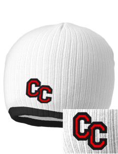 Community Christian School Lions Embroidered Champion Striped Knit Beanie