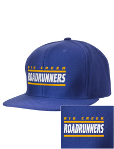 Big Creek Elementary School Roadrunners Embroidered D-Series Cap
