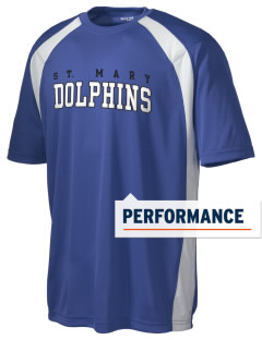 Saint Mary Elementary School Dolphins Men's Dry Zone Colorblock T-Shirt