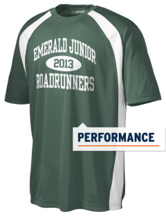 Emerald Junior Academy Roadrunners Men's Dry Zone Colorblock T-Shirt