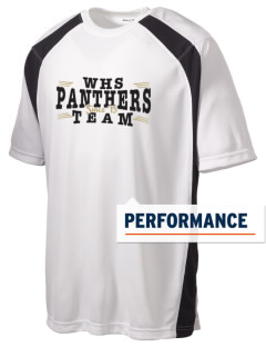 Wicksburg Elementary & High School Panthers Men's Dry Zone Colorblock T-Shirt