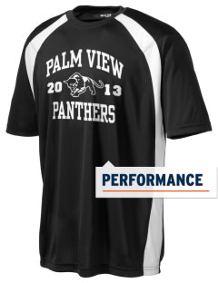 Palm View Elementary School Panthers Men's Dry Zone Colorblock T-Shirt