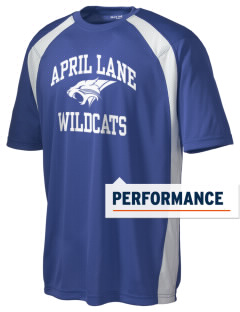 April Lane Elementary School Wildcats Men's Dry Zone Colorblock T-Shirt