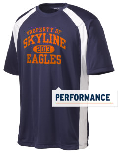 Skyline Elementary School Eagles Men's Dry Zone Colorblock T-Shirt