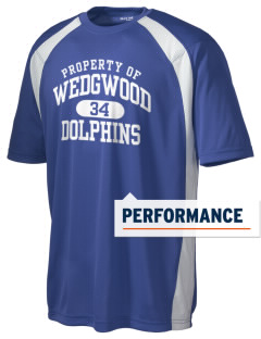 Wedgwood Elementary School Dolphins Men's Dry Zone Colorblock T-Shirt