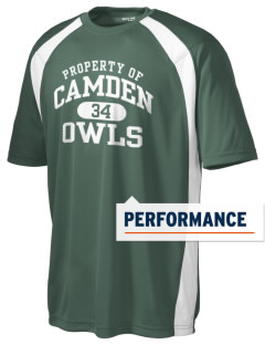 Camden Primary School Owls Men's Dry Zone Colorblock T-Shirt