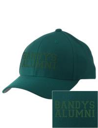 Bandys High School Alumni