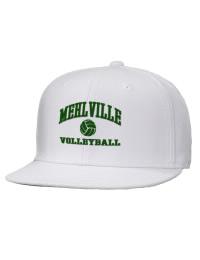 Mehlville High SchoolVolleyball
