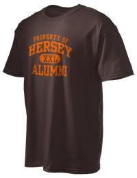 John Hersey High School Alumni